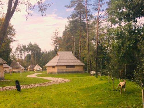 Ines Fiona od Potoka Kačáku, Slovinsko